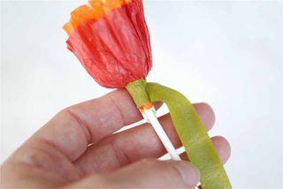 Floral tape 1