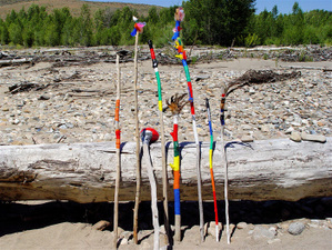 Walking_wilderness_sticks