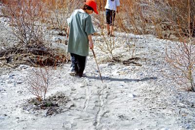 Stick_and_sand